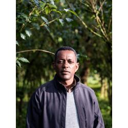 CAFE MOKA ETHIOPIE KAFFA TATMARA LE TORREFACTEUR